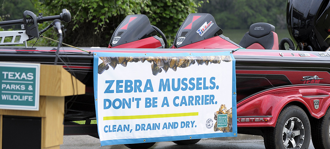 WINTER COLD DOESN'T DIMINISH ZEBRA MUSSEL THREAT