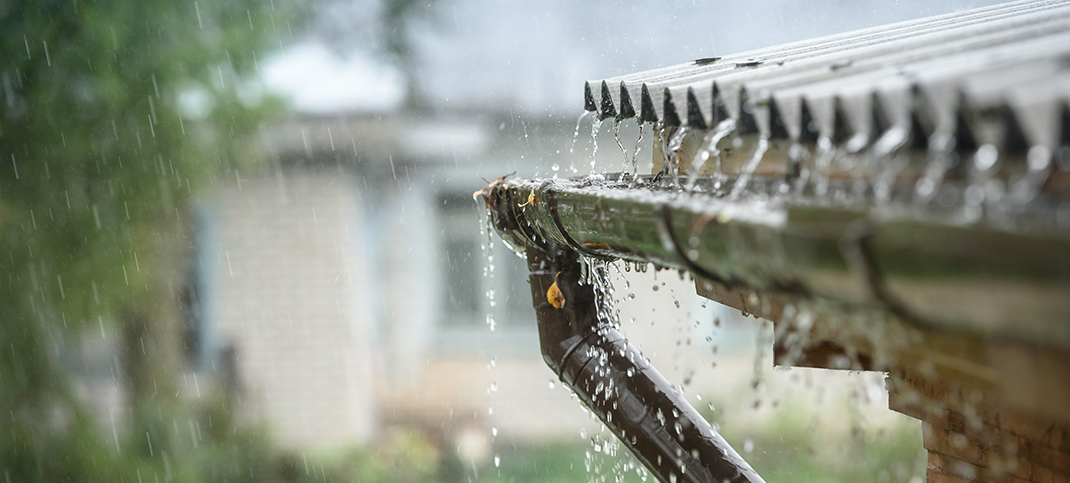 Collect rainwater, save money and water resources
